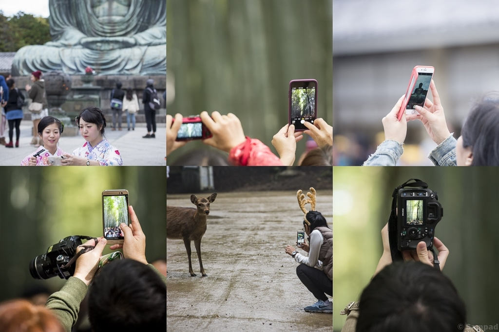 Throught cameras
